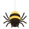 虫なのに昆虫の仲間ではありません 蜘蛛