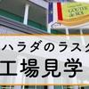 【工場見学】ハラダと言えばラスク!無料&予約不要でラスクも食べれるお得な工場見学でした!