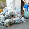 アルミ缶回収とプレスの作業 ナンキンハゼの実