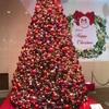 一時帰国で考える日本のクリスマス