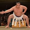 大相撲春場所5日目序盤を終え優勝争いの行方を占う、筆頭は鶴竜♪