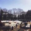 「ポケモンの巣:戸山公園(大久保地区)」の回