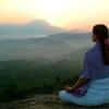 脳科学者も言っています。瞑想は絶対的なものじゃないよ!