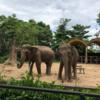 サイゴン動植物園へ行ったよ