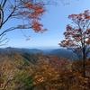 三頭山に登ってきました
