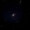 くまたぬきのソンブレロ~M104