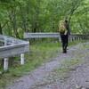 森で休むこと 林道の風景