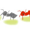 夏休みの自由研究 身近なアリの行動を観察する