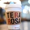 【韓国カフェ】テラロッサコーヒー TERAROSA COFFEE ソウル