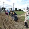 神原町シニアクラブ( 148 )     健康広場花ラインへの種まき