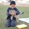 202【中東:秘話実話】シリア難民+国々の表と裏: イメージと現実と...