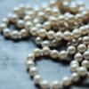 日本各地で真珠貝(アコヤガイ)は食べることができる。期間限定のたべることのできる時期であれば挑戦してみるのも有り。