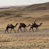 エジプト ギザ 3大ピラミッド  周囲の砂漠を満喫1日目、「パノラマポイント」で記念撮影、すぐ側にギザの街並み