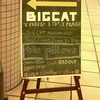 the pillows TOUR 08 LOSTMAN GO TO CITY@大阪BIG CAT(12/9)