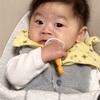 【生後7ヶ月】ルーちゃん、歯が生える。