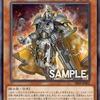 昇華騎士ーエクスパラディンの強さと相性の良いカード【遊戯王 環境】
