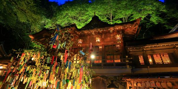 煌めく夏の夜空に願いを込めて…貴船神社の七夕笹飾りライトアップ