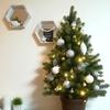 クリスマスツリーを出しました!