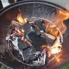 焚き火というかプチBBQ
