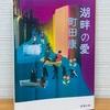 愛についてのドタバタ喜劇 / 『湖畔の愛』 町田 康