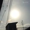 ☀️今日の太陽追加☀️ 追加の追加の太陽さん☀️
