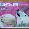 世界動物遺産 「最後の一頭に、してなるものか。」