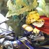 【秋葉原フィギュア】『Fate/Grand Order』ランサー/アルトリア・ペンドラゴンのフィギュアクオリティーを見よう!【グッドスマイルカンパニー】