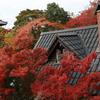 アサヒビール大山崎山荘美術館に行ってきました!~vol.1