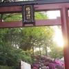 【根津神社】神社巡りが趣味の著者がオススメする東京十社の一つ根津神社をご紹介