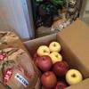 青森のお米とリンゴと遠来のわっとさま