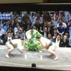研ナオコの隣の人 大相撲秋場所11