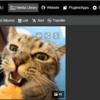 Prodibiで高解像度写真を登録してブログに埋め込んでみた。素敵やん!