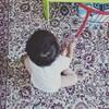 【2歳0ヶ月】息子の生態まとめ