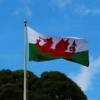 イギリスだけど中世ウェールズの王位継承はイングランドと違った方法だった