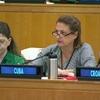 第74回総会第三委員会:第三委員会専門家、イラン、ソマリア、パレスチナ自治区における人権を検討するなか、国際規範軽視に対し警告