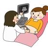 【妊娠】15週の3Dエコー画像!性別は分かる?もうすっかり人間の形!