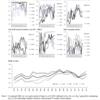 先進国株と新興国株の共変動は強まる傾向に