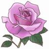 春のバラ展ご案内