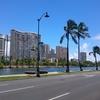 来年の海外旅行もハワイ!?来年の自分への申し送り