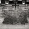 大雨の日の薬師寺金堂