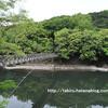 新緑が美しい癒されスポット!天ヶ瀬吊り橋【京都府宇治市】
