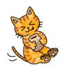 はちみつ大好きプーさんっぽい猫