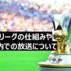 ブラジルリーグの仕組みや日本国内での放送について