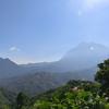 ウツボカズラとキナバル国立公園~マレーシア・コタキナバル~