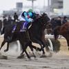 【レース回顧】エンプレス杯(指定交流G2)〜古馬牝馬長距離決定戦第1弾〜