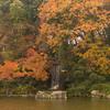 2016年末一人旅 第三週(104)石橋文化センターの池
