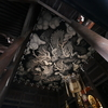 【写真】下から見上げる写真 ローアングル