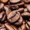 コーヒーを飲めば健康で長生きできる!