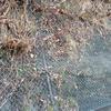 藤沢市内の土砂災害警戒区域と対策