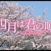【ネタバレ有】映画『四月は君の嘘』激しく椿ファンの僕の感想・レビュー